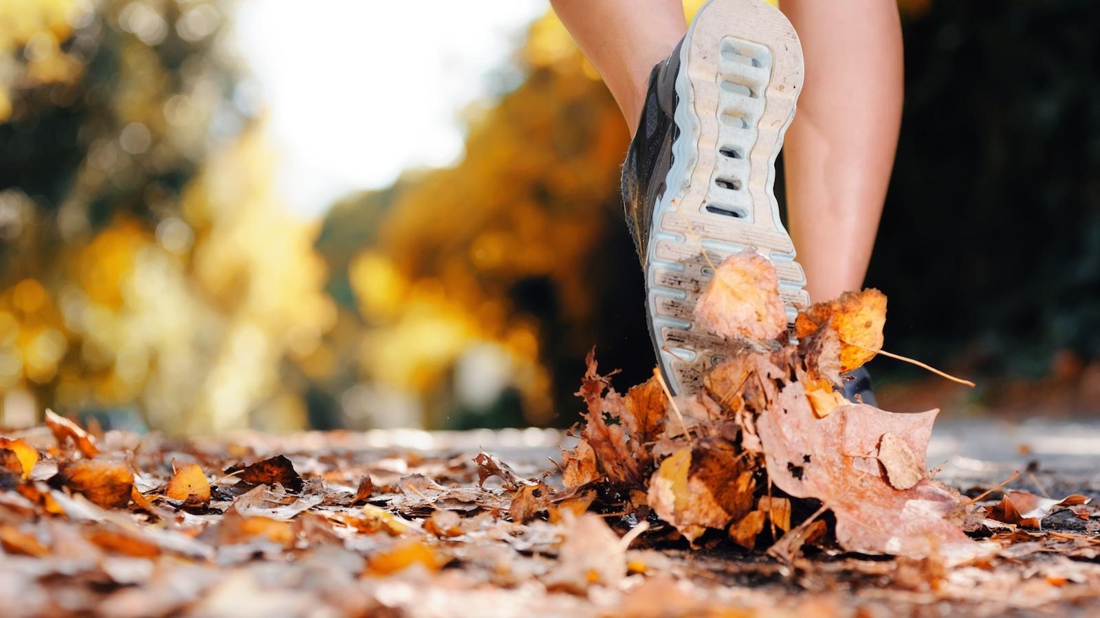 Fall jogger